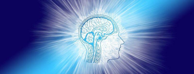 Dessin d'une tête transparente de profil avec vue sur le cerveau, sur fond bleu, représentant mon travail d'un hypnotiseur à Douai